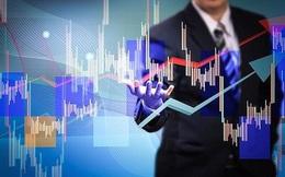 Khối ngoại mua ròng đột biến hơn 1.000 tỷ đồng trong tuần 6-10/1, tâm điểm PGD và CTG