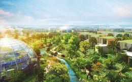Bước nhảy vọt của đầu tư bền vững tại Đông Nam Á