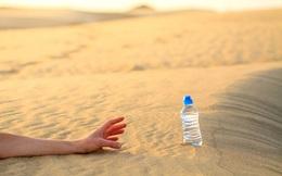 """Câu hỏi phỏng vấn """"hack não"""": Trong sa mạc có 2 cốc nước, 1 ly nước tiểu của ngựa, 1 ly nước tiểu của người, bạn sẽ chọn cái nào để uống khi sắp chết khát?"""