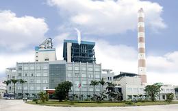 SCIC muốn đưa 45 triệu cổ phiếu Nhiệt điện Hải Phòng ra bán đấu giá trọn lô