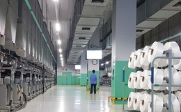 Đẩy mạnh kinh doanh sợi Recycle, Sợi Thế Kỷ (STK) báo lãi kỷ lục trong năm 2019