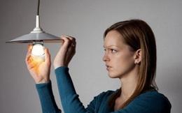 Bóng đèn Điện Quang (DQC) ngày càng 'kém sáng', lợi nhuận 2019 về đáy 10 năm với vỏn vẹn 27 tỷ đồng