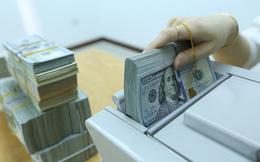 Đầu Xuân góp ý chính sách tiền tệ: Làm gì để không bị nhìn nhận là sử dụng tỷ giá để cạnh tranh thương mại?
