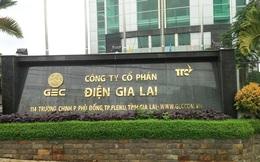 Điện Gia Lai (GEG): Năm 2019 lãi 254 tỷ đồng, vượt 108% kế hoạch