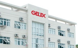 Gelex (GEX) báo quý 4/2019 lãi 145 tỷ đồng giảm 1 nửa so với cùng kỳ