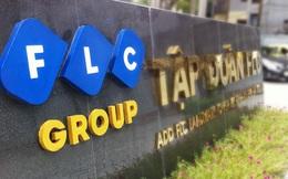 FLC báo lãi trước thuế gần 800 tỷ năm 2019, vượt 19% kế hoạch đề ra