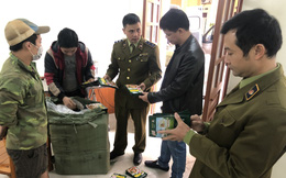 Thu giữ 14.000 bao bì giả mạo nhãn hiệu Knorr tại Lạng Sơn