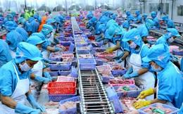 Xuất khẩu thủy sản được dự báo mang về 9 tỷ USD trong năm 2020