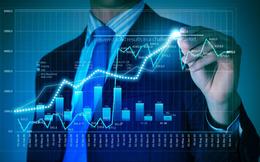Khối ngoại tiếp tục mua ròng cổ phiếu ROS bất chấp cổ phiếu giảm