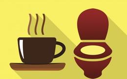Dành 5 giây để quan sát nước tiểu vào buổi sáng: 5 vấn đề về thận sẽ sớm được phát hiện