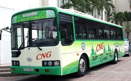 CNG Việt Nam ước lãi 107 tỷ đồng năm 2019, hoàn thành kế hoạch được giao
