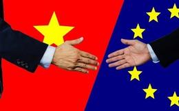 Nghị viện châu Âu chính thức thông qua Hiệp định EVFTA