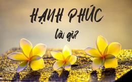 Ai cũng theo đuổi hạnh phúc nhưng mấy người hiểu thấu một điều đơn giản: Hạnh phúc không phải sự hoàn hảo!