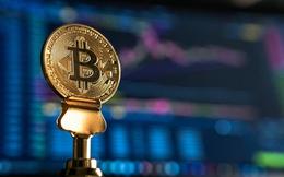 Bitcoin tăng mạnh lên ngưỡng 10.000 USD, chuyên gia khuyến cáo nhà đầu tư cẩn trọng