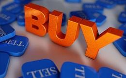 REE, HHS, HVG, NLG, SJS, HDC, VTC, TIG, DBD, VPK: Thông tin giao dịch lượng lớn cổ phiếu