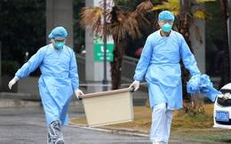 Không chỉ hàng không, du lịch, nhiều công ty niêm yết sẽ bị ảnh hưởng bởi cúm nCoV