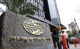 Vinaconex (VCG) báo lãi 811 tỷ đồng năm 2019, vượt hơn 9% kế hoạch năm