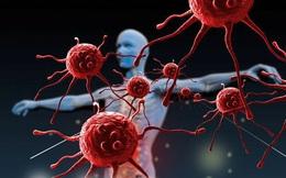 """""""Gia cố"""" hệ miễn dịch cá nhân giữa mùa dịch virus corona: Ăn gì giúp gia tăng miễn dịch? - Câu trả lời của chuyên gia khiến nhiều người """"ngã ngửa"""""""