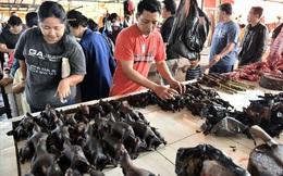 """Khu chợ """"đáng sợ nhất"""" của Indonesia loại dơi khỏi danh sách mặt hàng vì ám ảnh dịch cúm"""