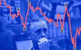 Chứng khoán Việt Nam giảm mạnh top đầu Thế giới, danh mục Dragon Capital, VinaCapital bị tác động mạnh