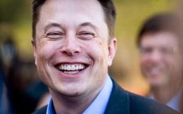 """Tesla khiến cả Phố Wall ngỡ ngàng: Cổ phiếu tăng 36% chỉ trong 2 ngày, cho các nhà sản xuất ô tô kỳ cựu """"hít khói"""""""