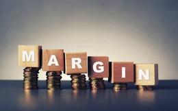 Thanh khoản thị trường giảm sút, dư nợ cho vay margin vẫn tăng 22% trong năm 2019