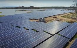 Dự án điện mặt trời Hồ Núi Một 1 được ký hợp đồng mua bán điện