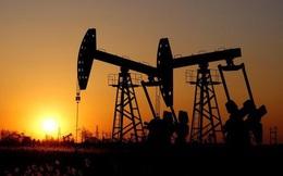 Tại sao giá dầu lại giảm đột ngột và điều này có nghĩa là gì?