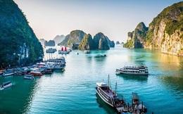 COVID-19: Quảng Ninh tạm dừng đón khách tham quan Vịnh Hạ Long, Cô Tô, Vân Đồn... hai tuần kể từ 12/3/2020