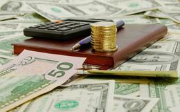HPG, NLG, NTL, HNG, TV2, HT1: Thông tin giao dịch lượng lớn cổ phiếu