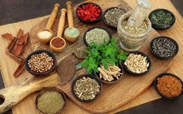 Học hỏi người Ấn Độ chế độ ăn kiêng Ayurvedic - thói quen ăn uống dựa trên phương pháp chữa bệnh lâu đời nhất