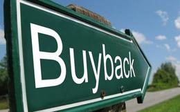 Thị giá giảm sâu, hàng loạt doanh nghiệp tiến hành mua cổ phiếu quỹ