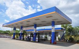 Petrolimex (PLX) chốt danh sách cổ đông trả cổ tức bằng tiền tỷ lệ 20%