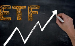 Quỹ VNFIN LEAD ETF có thành tích vượt trội so với thị trường và phần lớn các cổ phiếu ngân hàng