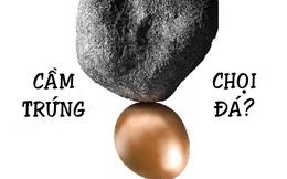 """Phỏng vấn hỏi """"Một người cầm trứng chọi đá xong, tại sao trứng lại không vỡ?"""": Đây mới là 2 câu trả lời nhà tuyển dụng muốn nghe"""