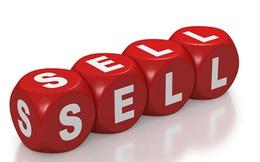 Đạm Hà Bắc đưa hơn 5 triệu cổ phần Hưng Phát Hà Bắc ra bán đấu giá với giá khởi điểm gấp 3 lần thị giá