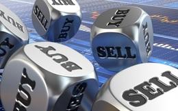VNM, KBC, PNJ, GEX, VPR, HID, HDC, PC1, HID, MAC, D11: Thông tin giao dịch lượng lớn cổ phiếu
