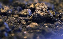 Thế giới đình trệ vì Covid-19, cuộc chiến giá dầu tạo ra nghịch lý: Than là nhiên liệu hóa thạch đắt đỏ nhất hành tinh