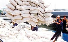 Thủ tướng yêu cầu tạm dừng ký mới hợp đồng xuất khẩu gạo