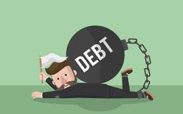 Doanh nghiệp đầu tiên bị buộc phá sản khi đang niêm yết: Những ngân hàng nào là chủ nợ của SPP?