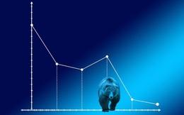 VN-Index mất gần 5% trong phiên đầu tuần, HPG ngược dòng thị trường tăng điểm