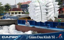 Việt Nam dư khoảng 6,6 triệu tấn gạo, Bộ Công thương đề xuất Thủ tướng cho xuất khẩu trở lại