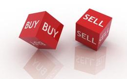 Liên tục bán ra, Pyn Elite Fund không còn là cổ đông lớn của Vneco