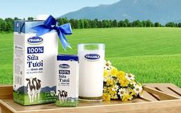 Sau nhiều lần đăng ký, F&N Dairy vừa mua thêm được 6 triệu cổ phần Vinamilk