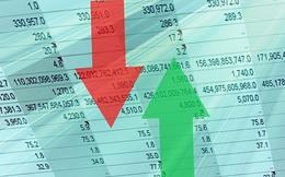 """Lợi nhuận 2019 nhóm Công ty chứng khoán ngoại tăng trưởng 218% còn các """"ông lớn"""" trong nước đồng loạt giảm"""