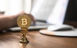 Bitcoin bật tăng, 'hồi sinh' nhiều tiền ảo