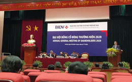 ĐHĐCĐ BIDV: Ngân hàng chính thức không còn nợ xấu tại VAMC