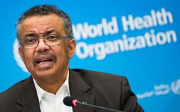 Tổng giám đốc WHO: Việt Nam đã sớm thực hiện nhiều biện pháp hiệu quả