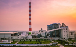 SCIC đưa 45 triệu cổ phần Nhiệt điện Hải Phòng ra đấu giá trọn lô