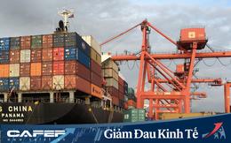 WTO dự báo Covid-19 có thể làm giảm tới 1/3 thương mại toàn thế giới, kịch bản lạc quan vẫn nghiêm trọng hơn khủng hoảng 2008